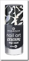 ess_CrackingTopCoat01