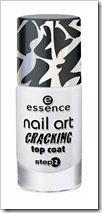 ess_CrackingTopCoat02