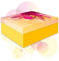 sfm_Box